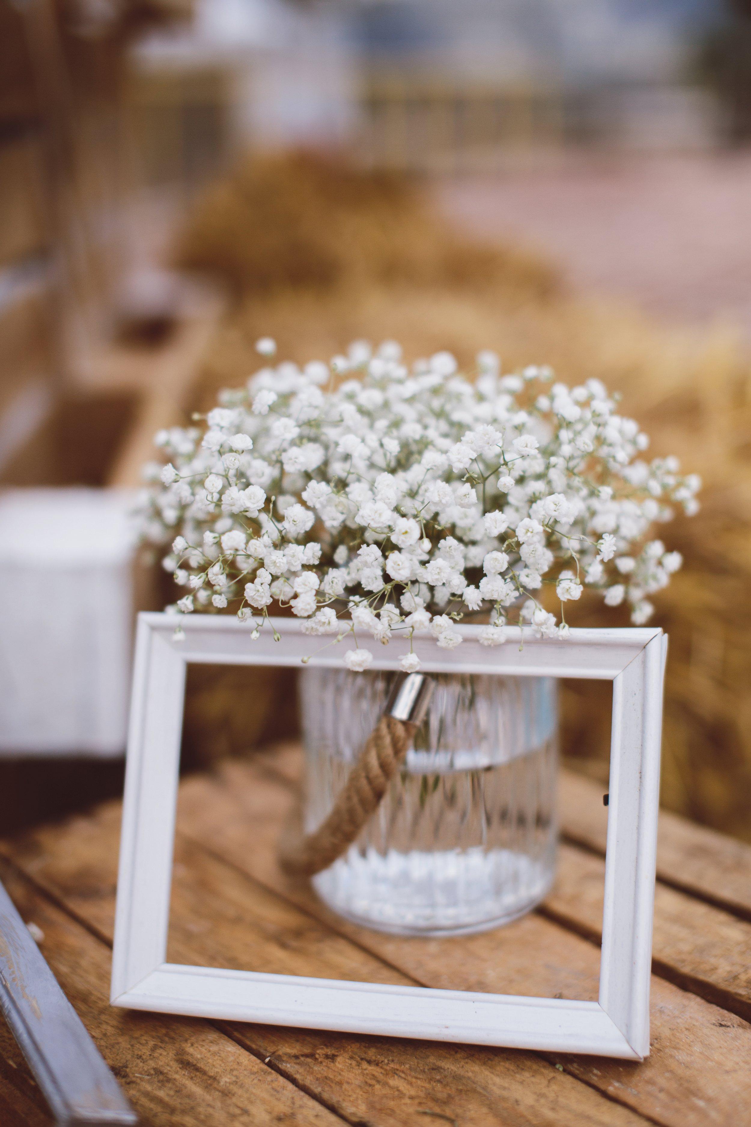 dalibora_bijelic_istria_wedding_0034
